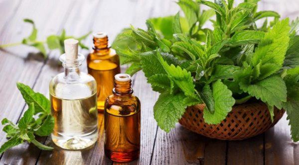 Sử dụng những loại dầu được chiết xuất từ đinh hương, bạc hà để hạn chế đau răng khôn